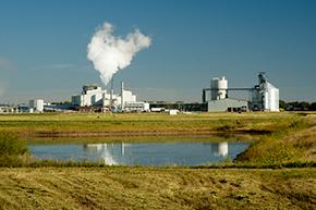 ethanol grain processor